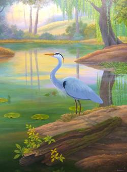 Prince of the Pond