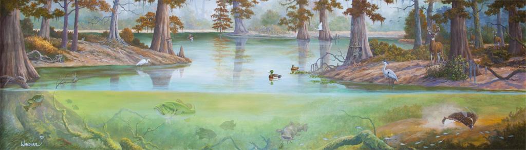 Brackish Water Wonders