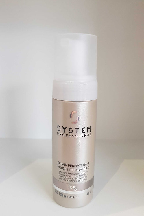 System Proffessional Repair Mousse