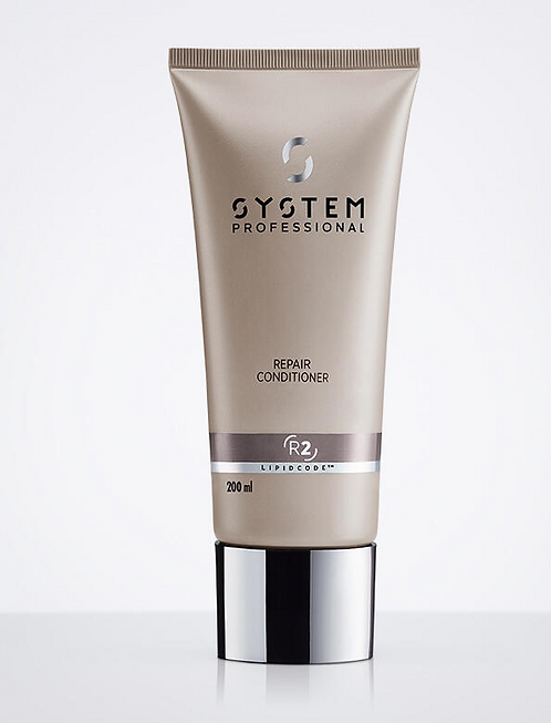 System Professional Repair Conditioner