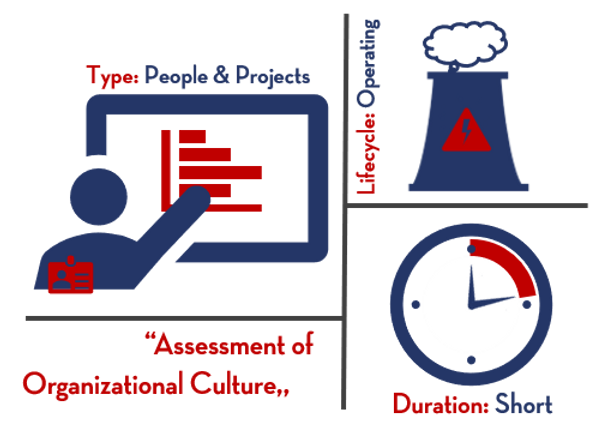 Assessment of Organizational Culture | Goodnight Consulting
