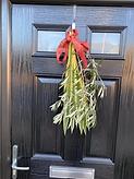 Door palm.png