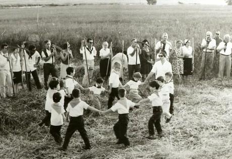 ילדים רוקדים במעגל בשדות בית השיטה