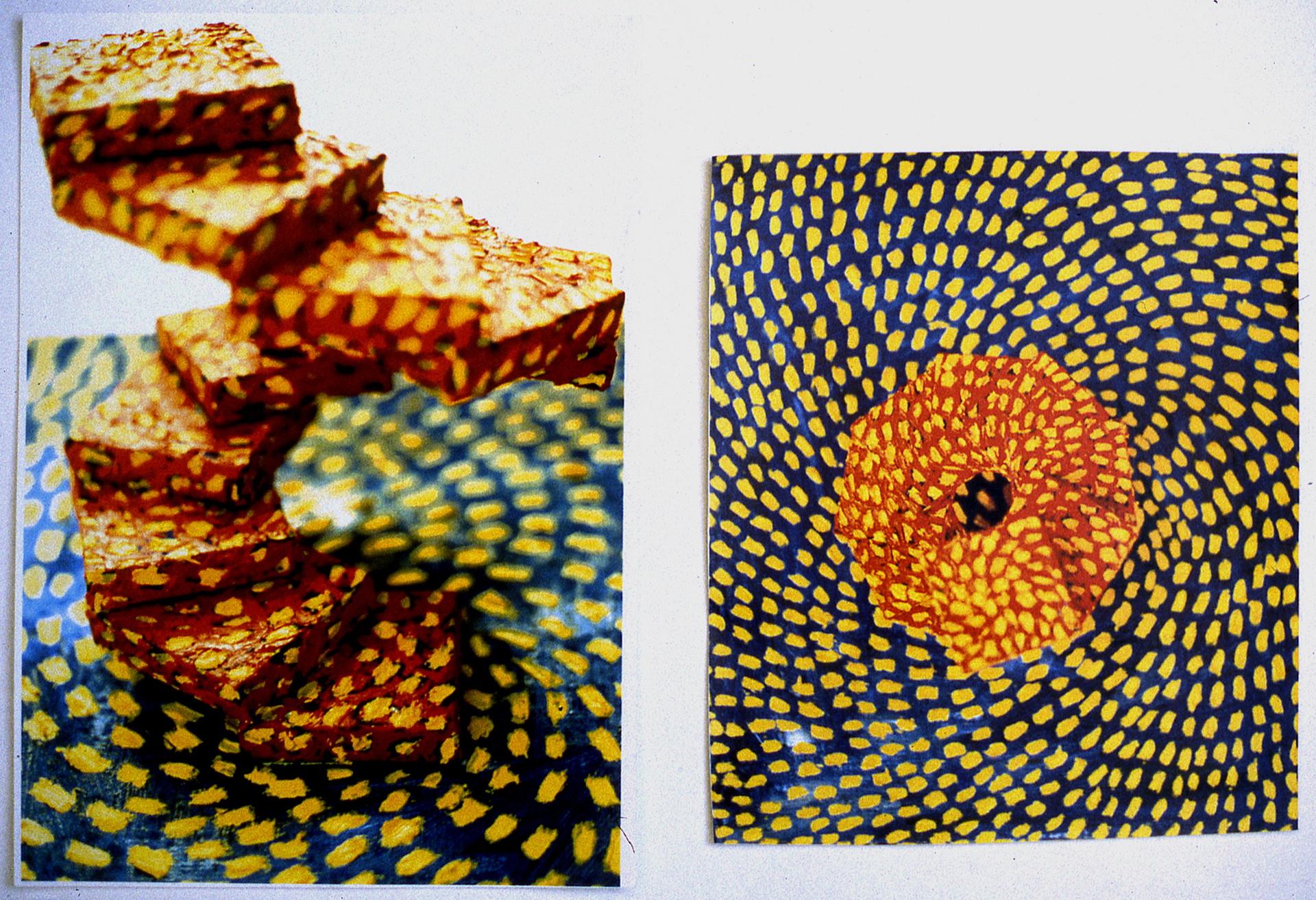 Sunflower Structure