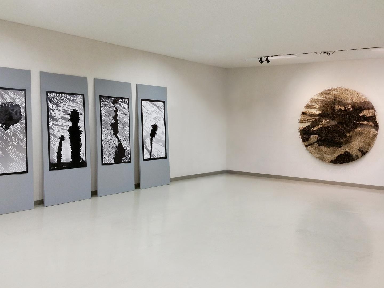 Nakanojo Biennale, 2017, Japan