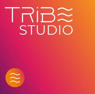 Tribe Studio