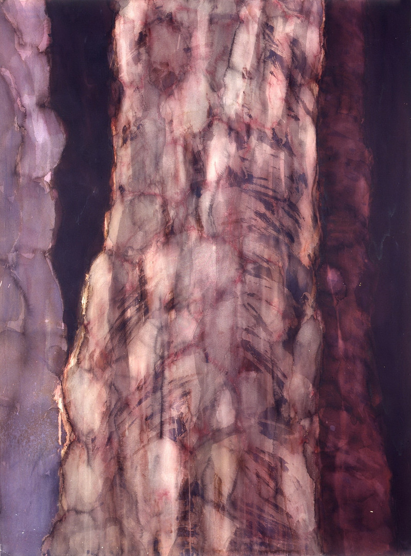 From the series Palm Tree Trunks