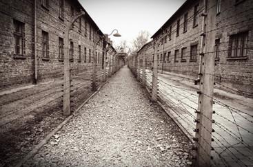 גדרות חשמליות במחנה אושויץ