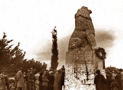 תמונה של האריה השואג