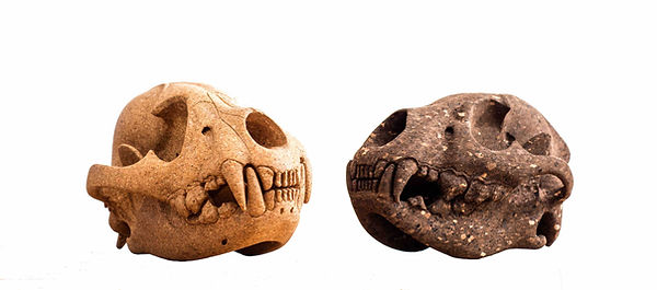 Dark and light hand carved cork hyena skulls by Laurie Wiid Van Heerden available in spain france and portugal through mimic 2020 collection of african designs
