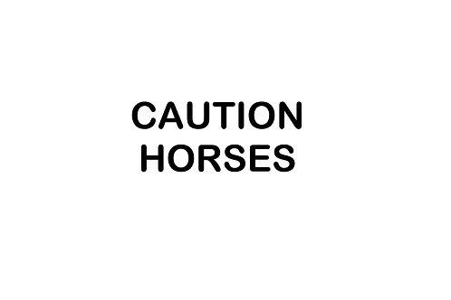Caution Horses Decal / Sticker