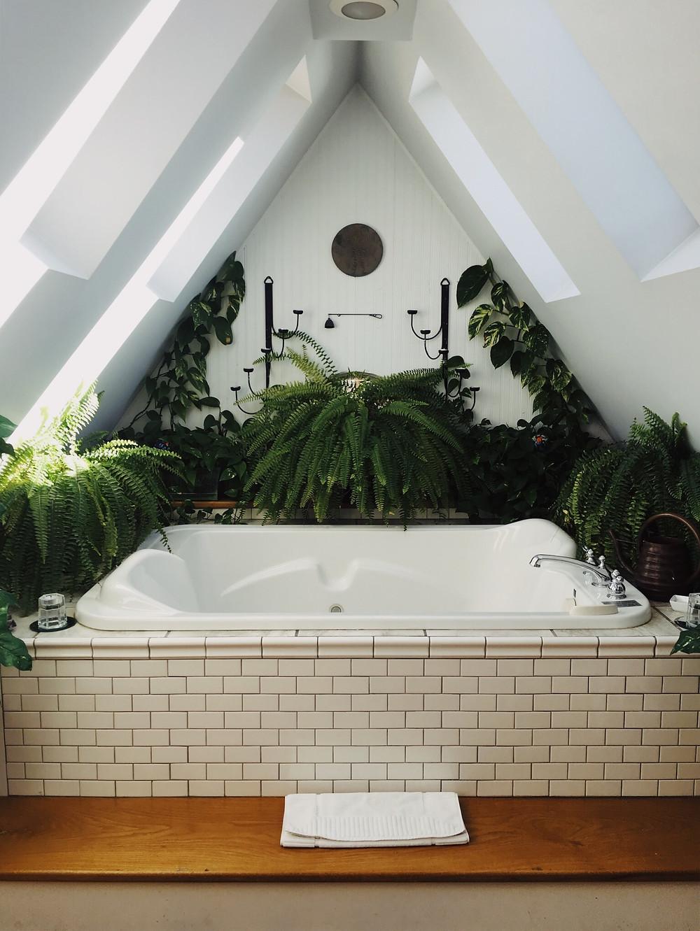 Baño sostenible. Tina rodeada de matas para hacer el baño más verde y sostenible. Casa sostenible.
