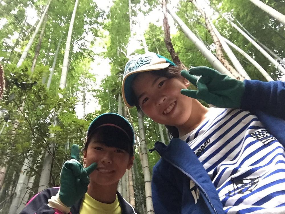 竹を調達に来ました!