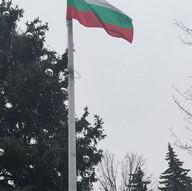 Flag Raising_Brampton_6.jpg