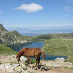 """Русалина Захариева - """"На път за Рилските езера"""" - 12 юли 2016 г. - Рила"""