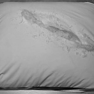 taped down pillow crop 2.jpg