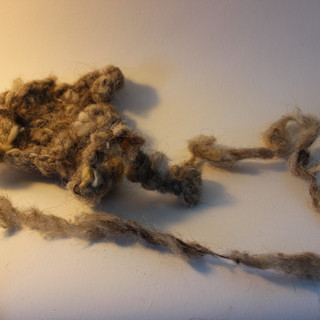 Rachel wool 1.jpg