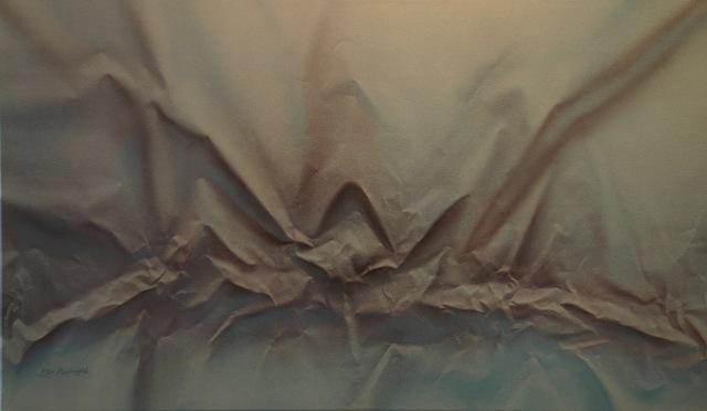 Fabric Series   24 x 60