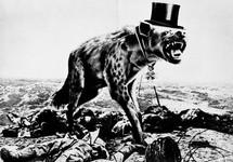 Hyena-10.jpg
