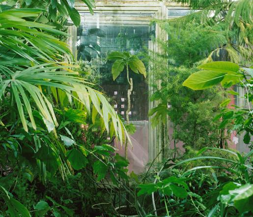 plants_009.jpg