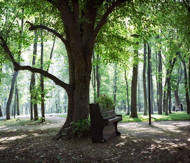 noise_in_the_park_03.jpg