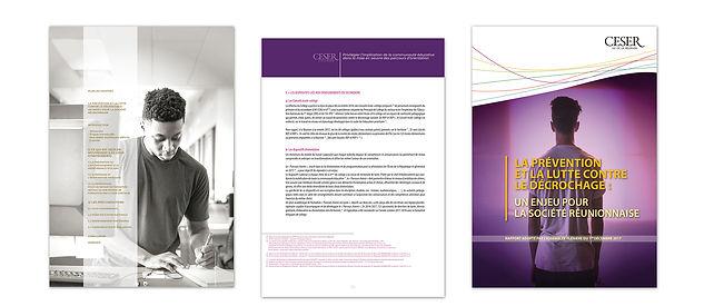 creation rapport d'activité réunion 974