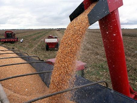 Por el fuerte impacto de la sequía, la economía mostró sus primeros datos negativos en más de un año