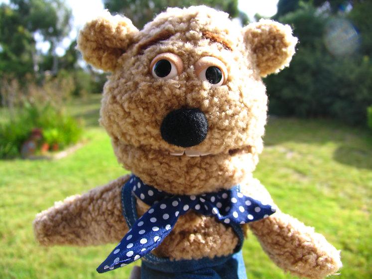 Arnie teddy