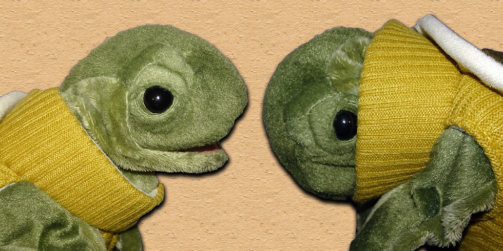 Using Puppets for Social & Emotional Learning