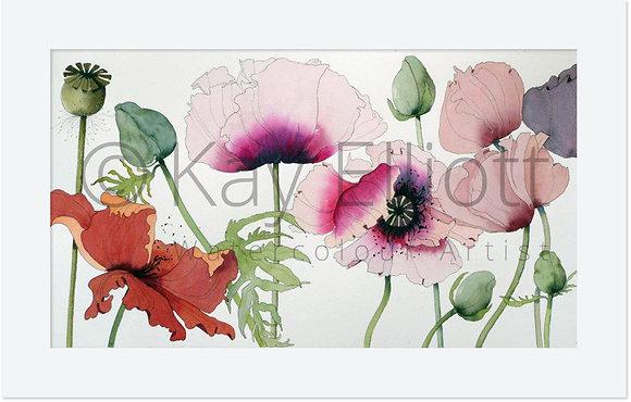 Shout Poppies - Original Painting