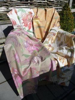 Eva - Echinacea