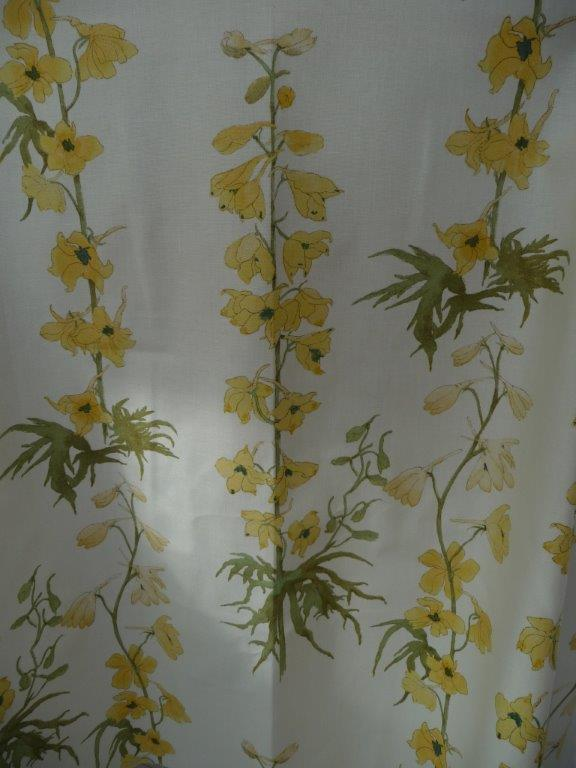 Yellow Delphinium 3