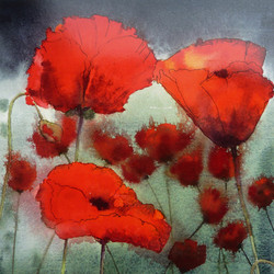 Stormy Poppies