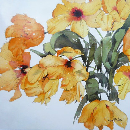 Gold Parrot Tulips