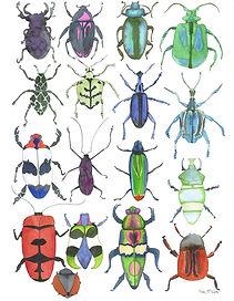 Bugs 3 RT Email.jpg