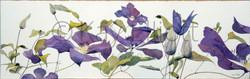 Trailing Purple Clematis