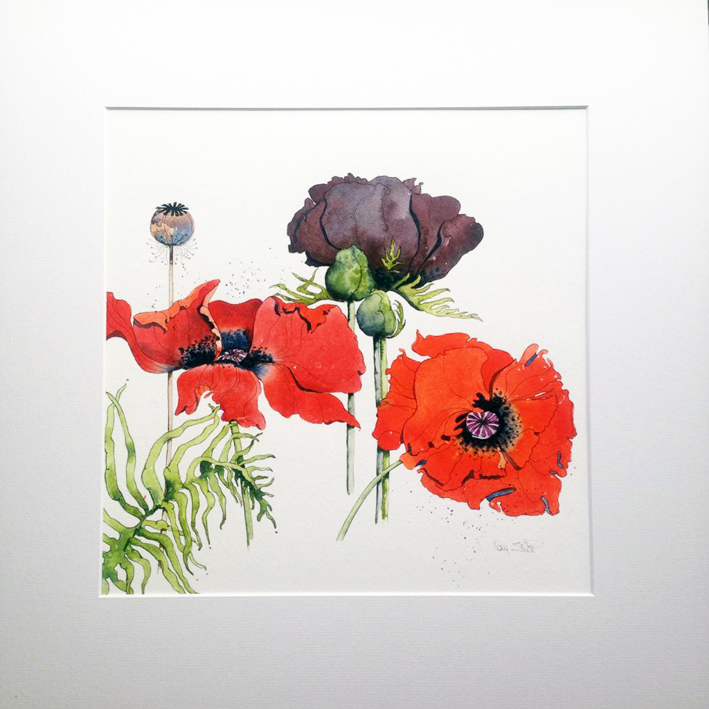 NEW* Poppies