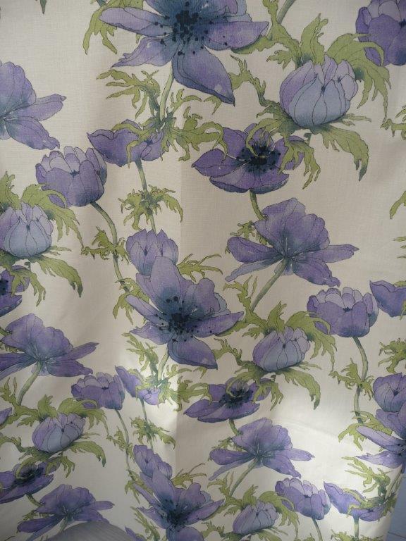 Blue Anemone 4