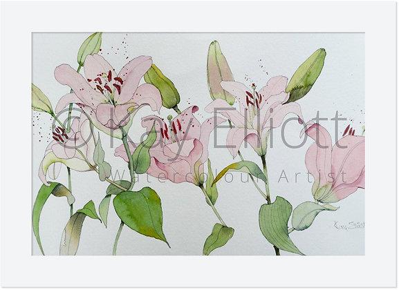 Palest Lilies - Original Painting