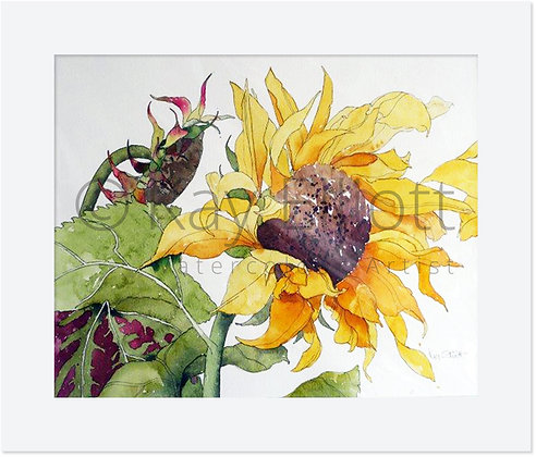 Single Sunflower - Original Painting