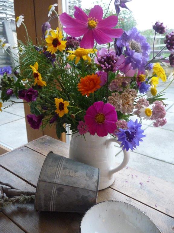 Flowers from the Wild Flower Garden