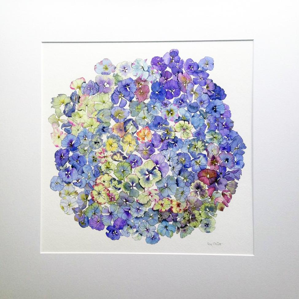 NEW* Blue hydrangea