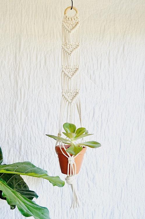 Macramé Hanging Planter