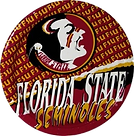 Florida%20State%20Seninoles_edited.png