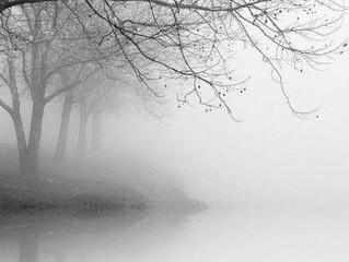 Uma mente aturdida perde a calma e a lucidez