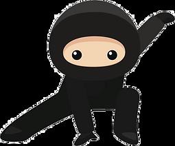 Ninja 1.png