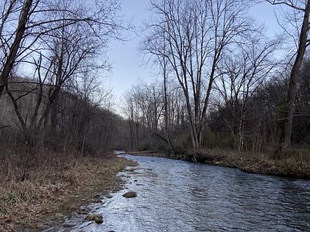Caney Fork Creek