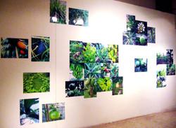 Ingenio exhibition (2006)