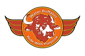 Water Buffalo's Ride with Purpose