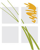 Serquis + Associates 5.10.21.jpg